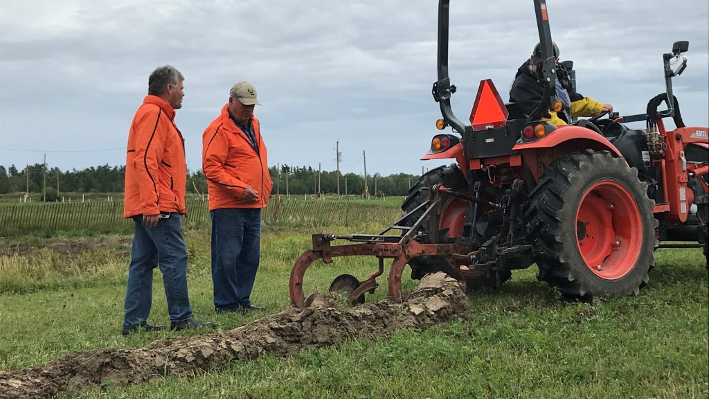 IPM 2019 is here! - Country 600